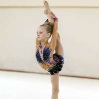 Фото художественная гимнастика ставрополь